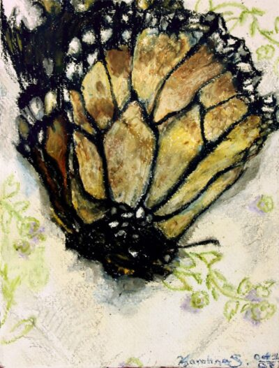 monarch butterfly oil pastel drawing