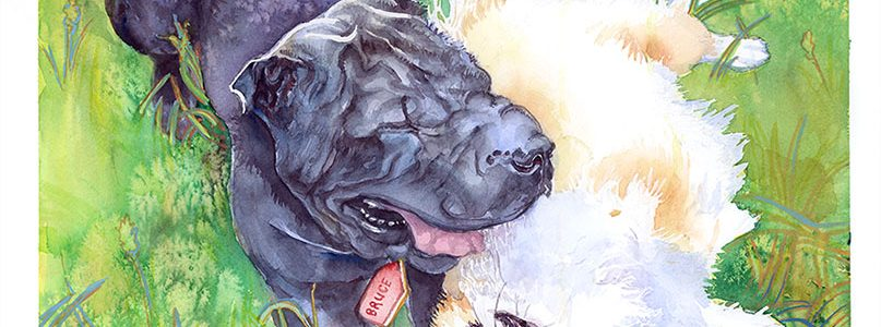 Pet Portrait in Whimsical Watercolor – Order Yours Today