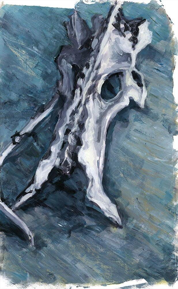 acrylic bone study