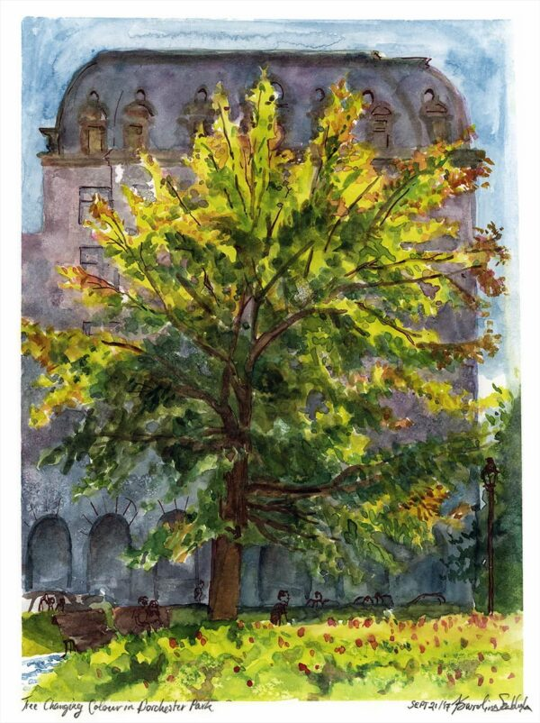 tree watercolor en plein air painting