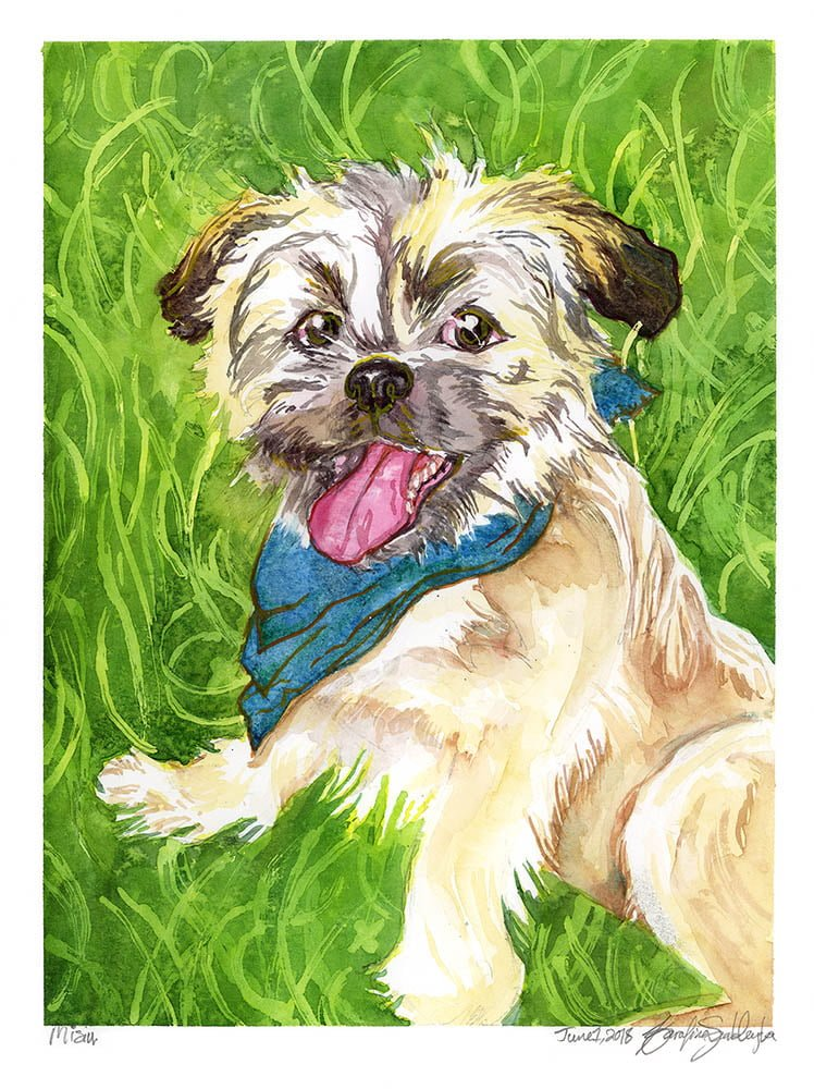 misu watercolor pet portrait dog portrait