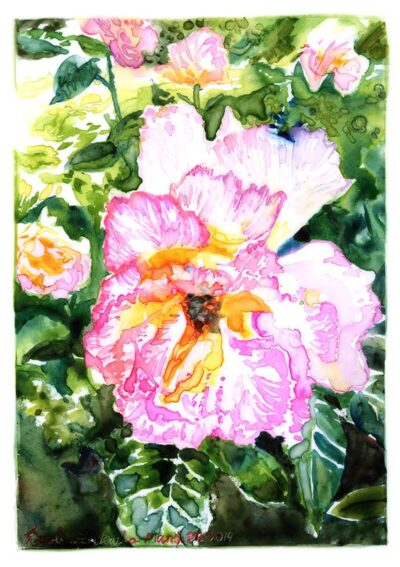 mottled rose watercolor on yupo paper