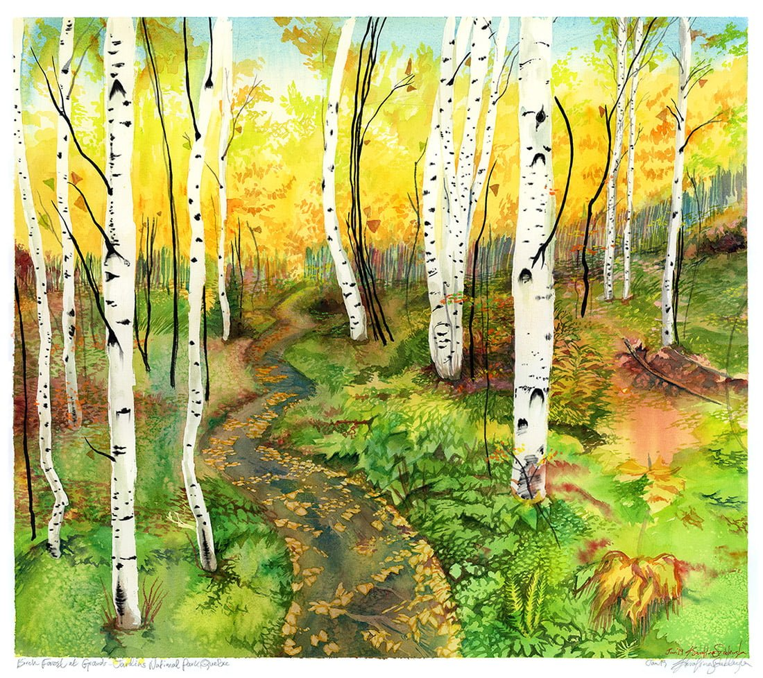 Forest Painting Art