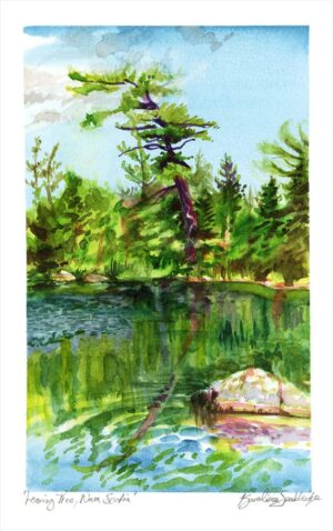 leaning tree nova scotia en plein air watercolor painting by karolina szablewska