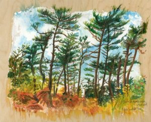 nova scotia forest en plein air watercolor painting by karolina szablewska