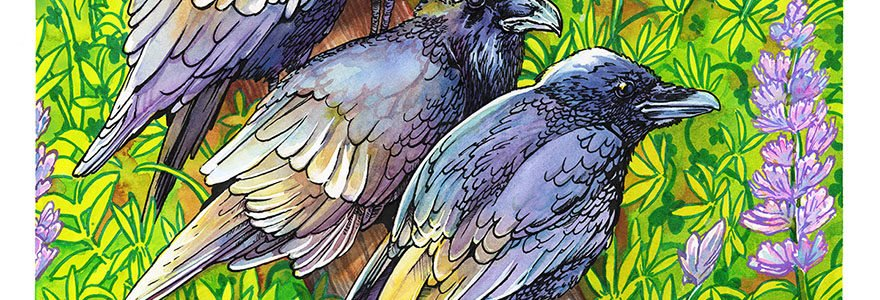 A Marvelous Murder: Crow Painting & Color Theory