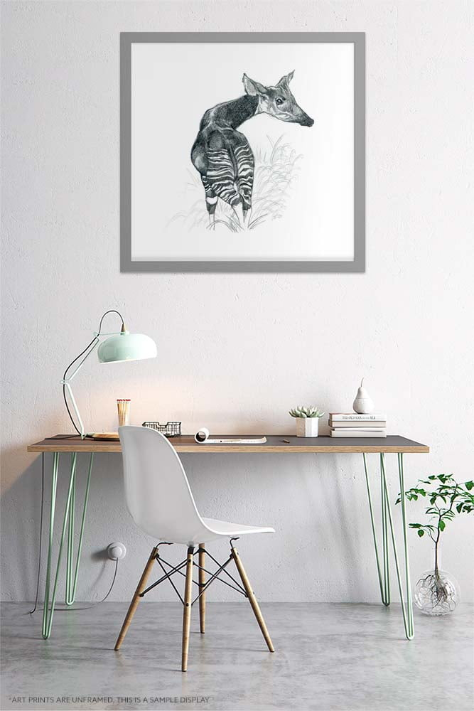 Okapi Art Prints - Extra Large Wall Art of Realistic Okapi Pencil Drawing / Realism Art / Nature Wall Art / African Safari Wildlife by Karolina Szablewska