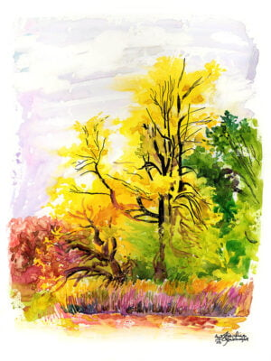 yellow tree plein air painting watercolor on yupo by karolina szablewska