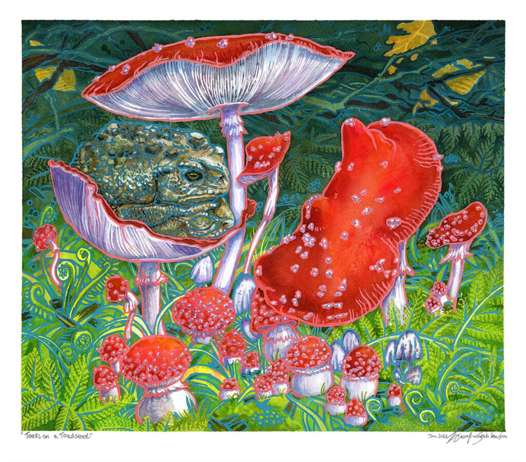 toads on a toadstool watercolor painting by karolina szablewska